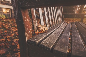 Eine schöne Perspektive und ein gemütliches Herbst-Bild...
