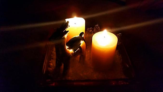 Hier wirkt das Licht durch die Dunkelheit so richtig kuschelig-wärmend.